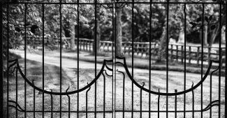 clôture grille rigide